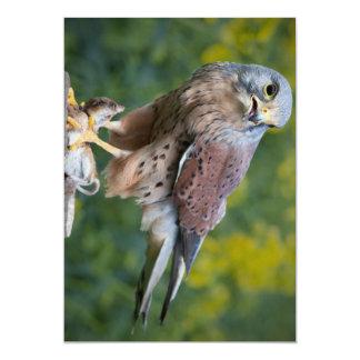 "Bird of Prey Invitation 5"" X 7"" Invitation Card"