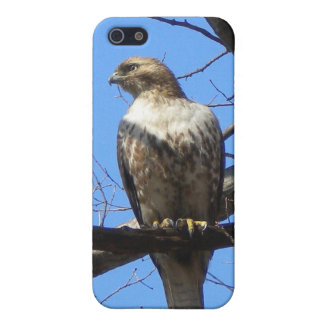 Bird of Prey Speck iPhone case