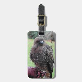 Bird of Prey Tag For Luggage