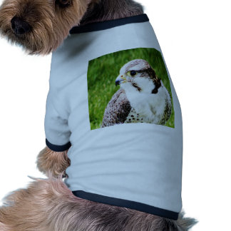 Bird Of Prey waiting for true love and peace Pet Tee Shirt