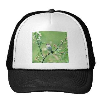 Bird Of Spring Trucker Hats