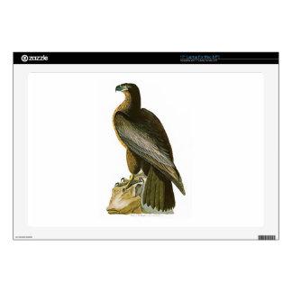 Bird of Washington John Audubon Birds of America Decal For Laptop
