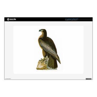 "Bird of Washington John Audubon Birds of America Decals For 15"" Laptops"