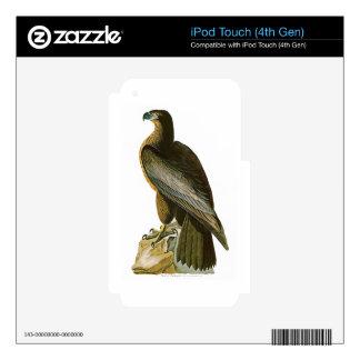 Bird of Washington John Audubon Birds of America iPod Touch 4G Skin