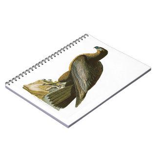 Bird of Washington John Audubon Birds of America Notebook