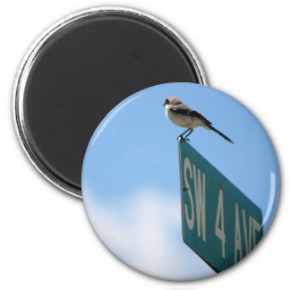 Bird on 4th Ave. magnet