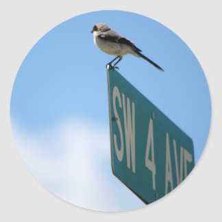 Bird on 4th Ave. sticker