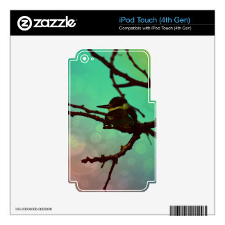 Bird On A Branch -Aqua N Pink iPod Touch 4G Skins