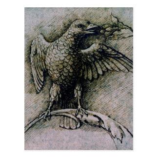 Bird on a branch by Andrea Mantegna Postcard