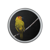 Bird on a Branch Speaker