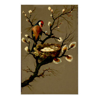 BIRD ON A BRANCH WITH A NEST POSTERS