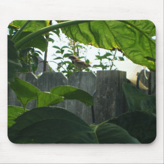 Bird on a Fence Mouse Pad
