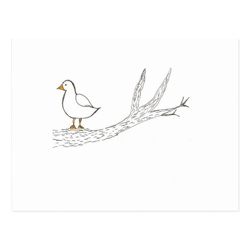 Bird on a Limb Post Card