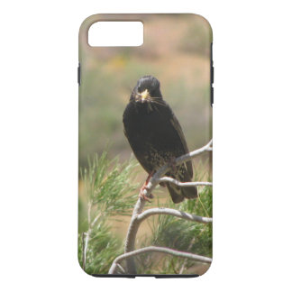 Bird on a pine branch iPhone 7Plus Case