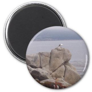 Bird on a Rock Magnet Fridge Magnets