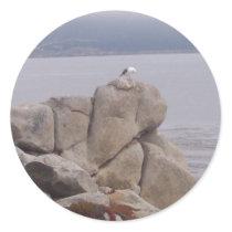 Bird on a Rock Sticker