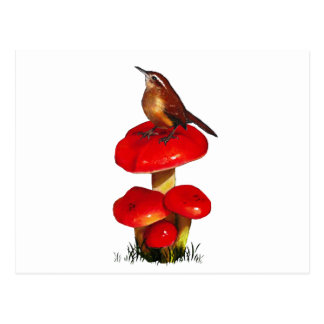 Bird On A Toadstool: Original Pastel Art Postcard
