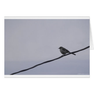 Bird on a Wire Card