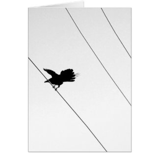 Bird on a Wire :: Find Balance :: Take Flight Card