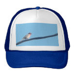 Bird on a wire hats