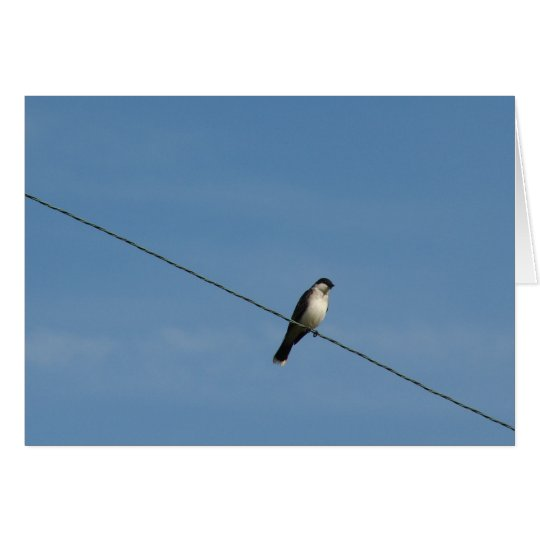 Bird on a Wire Photo Card