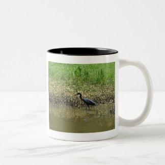 Bird on Avery Island, Louisiana Two-Tone Coffee Mug