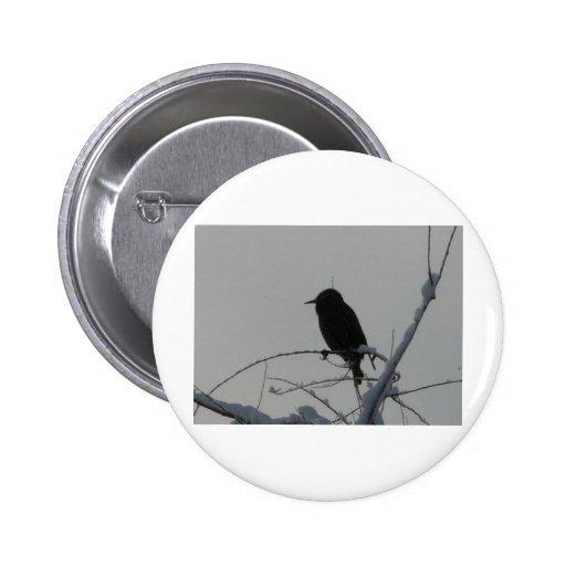 bird on cold day 2 inch round button