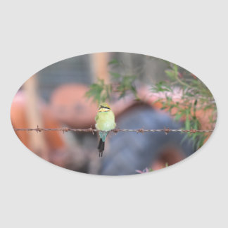 BIRD ON FENCE & TRACTOR RURAL AUSTRALIA OVAL STICKER