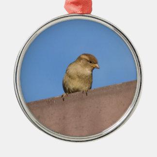 bird on roof metal ornament
