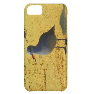 Bird On The Beach Case For iPhone 5C