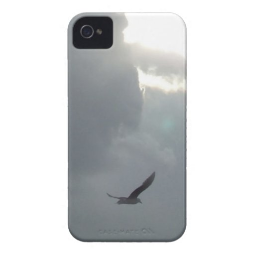 bird on the sky vo1 iPhone 4 cases