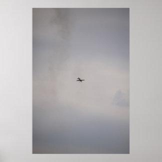 bird or plane poster