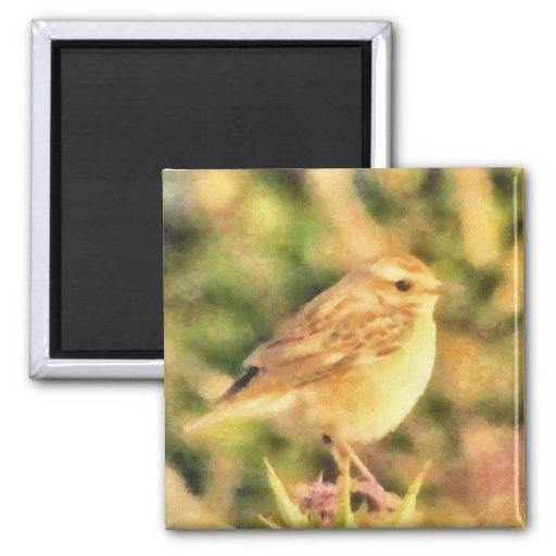 Bird painting refrigerator magnets