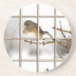 Bird Perched on Branch - Beverage Coaster