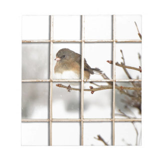 Bird Perched on Branch - Notepad