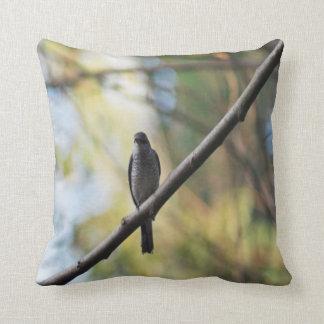 bird Photo #14 Throw Pillow