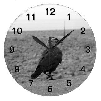 Bird Picture. Jackdaw. Clocks