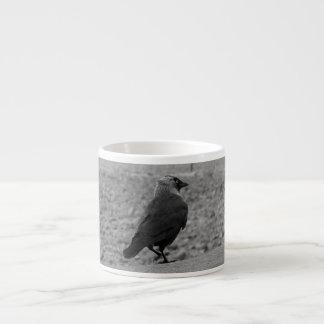 Bird Picture. Jackdaw. Espresso Cup