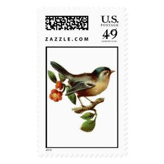 Bird Postage Stamps