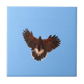 bird prey  solid landing tiles