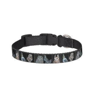 Bird Print Dog Collar