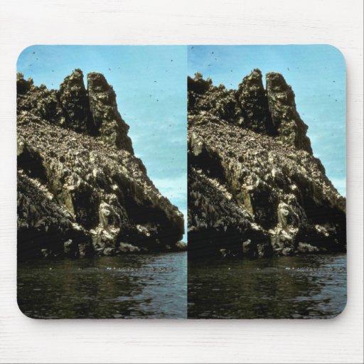 Bird Rock at Cape Newenham Mouse Pad