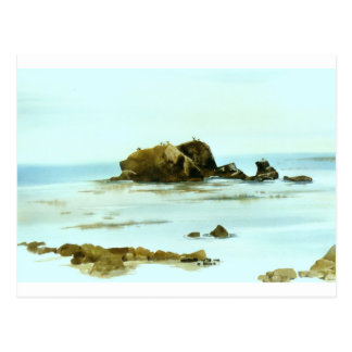 Bird Rock Postcard