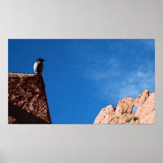 Bird & Rock Print