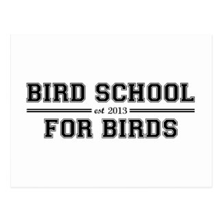 Bird School Which Is For Birds Postcard
