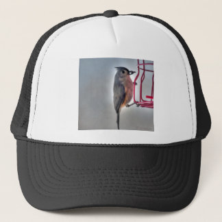 Bird Seed in Mouth Profile Trucker Hat