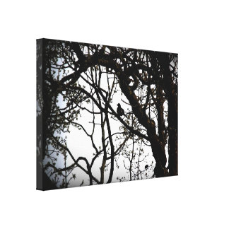 Bird Silhouette Canvas Stretched Canvas Prints