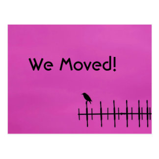 Bird Silhouette - We Moved Postcard