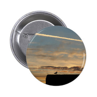 Bird silhouetted against the setting sun pin