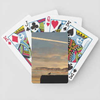 Bird silhouetted against the setting sun bicycle playing cards